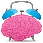 mozgi11